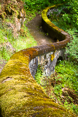 Image of WPA path at Shepherd's Dell in the Columbia River Gorge