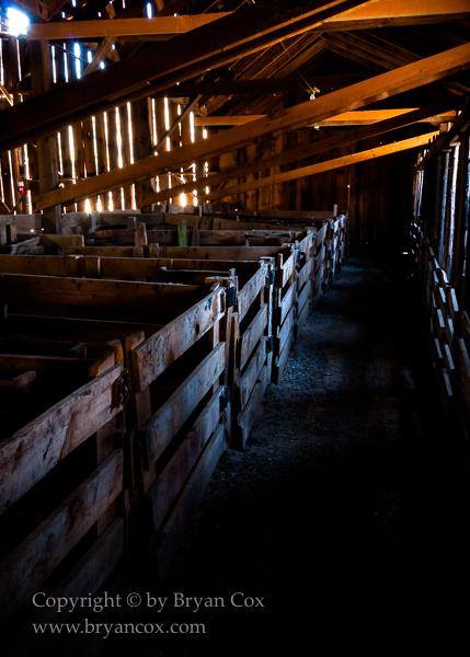 Image of Sheep barn interior