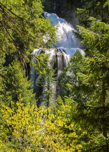 Image of Falls Creek Falls