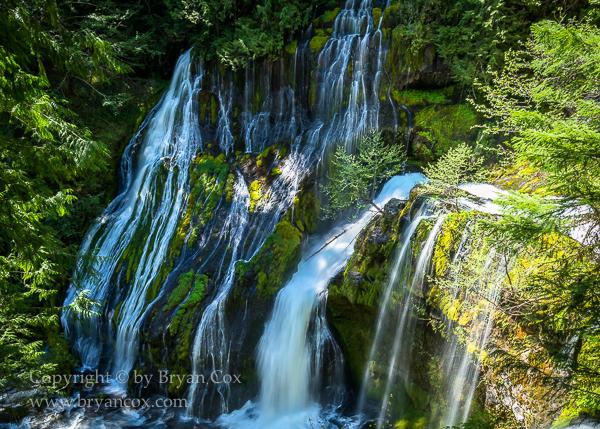 Image of Panther Creek Falls