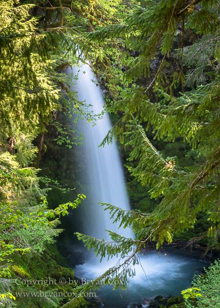 Image of Miller Creek Falls