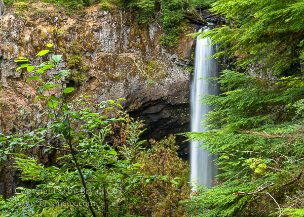 Image of Big Creek Falls