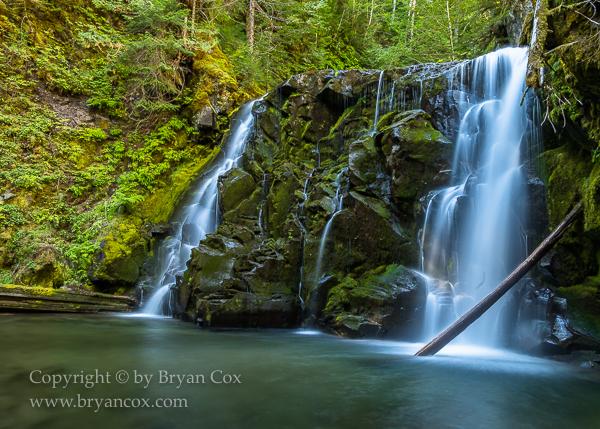 Image of Pine Creek Falls
