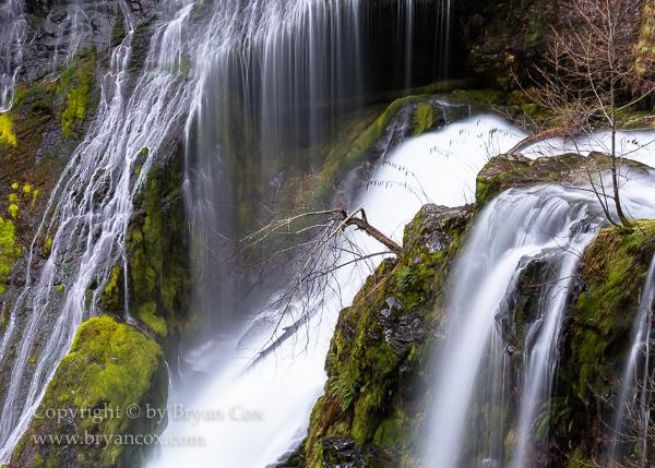 Image of Detail of Panther Creek Falls